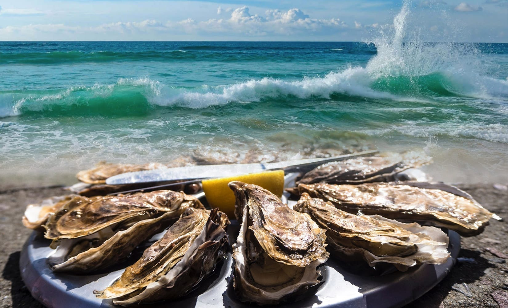 Awful Arthur's Oyster Bar header image background with waves crashing in the background and oysters and a lemon half